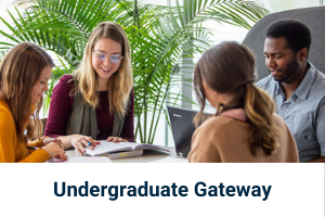 Click here for undergraduate students